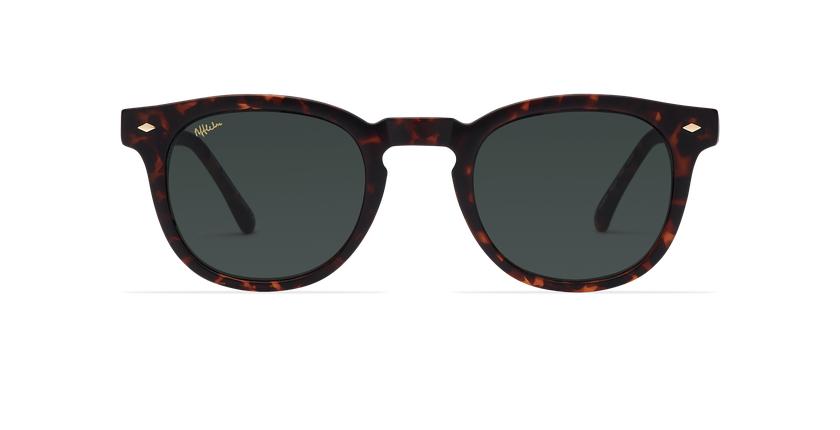 Gafas de sol hombre HARBOR carey - Vista de frente