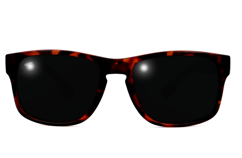 Gafas de sol hombre DYLAN POLARIZED carey - danio.store.product.image_view_face