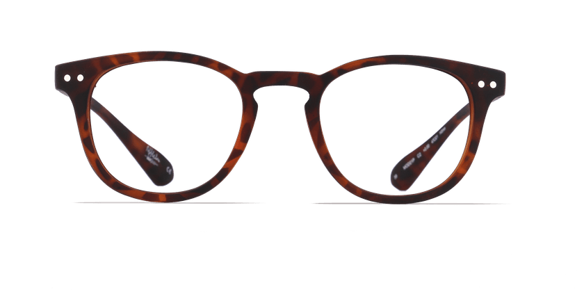 Gafas graduadas BLUE BLOCK UNISEX carey - vista de frente