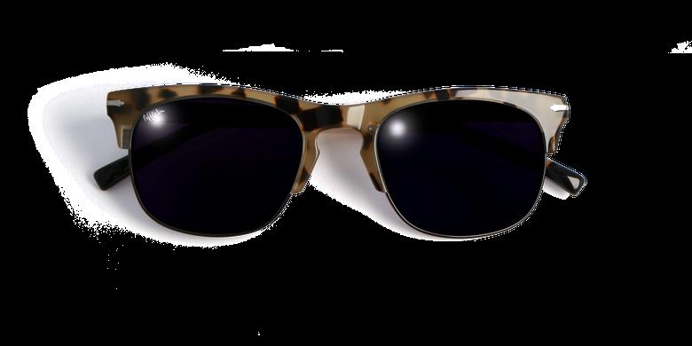 Óculos de sol homem ASHFORD tartaruga