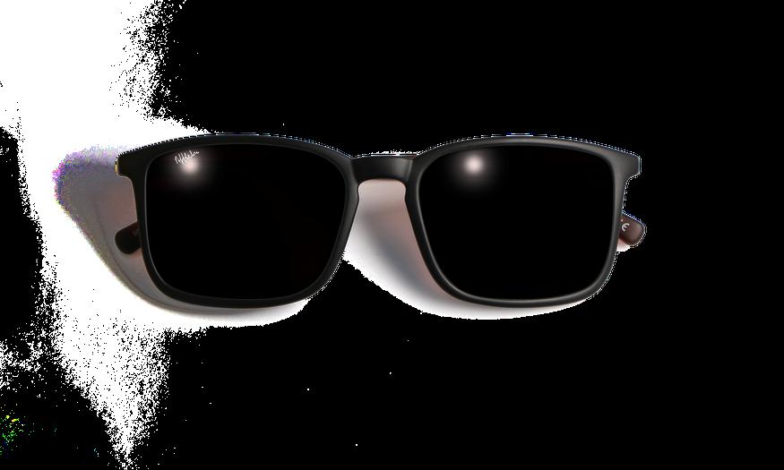 Lunettes de soleil homme SILVIO noir