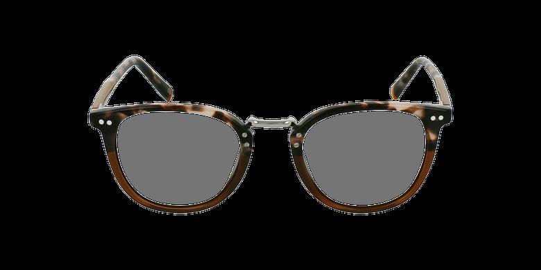 Óculos graduados BACH BR castanho