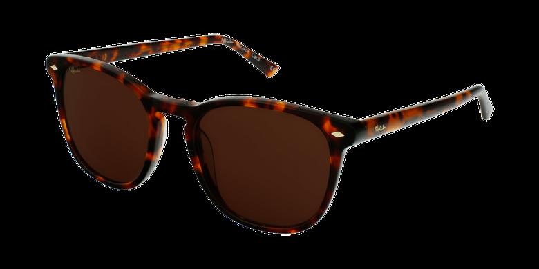 Óculos de sol JACK TO tartaruga