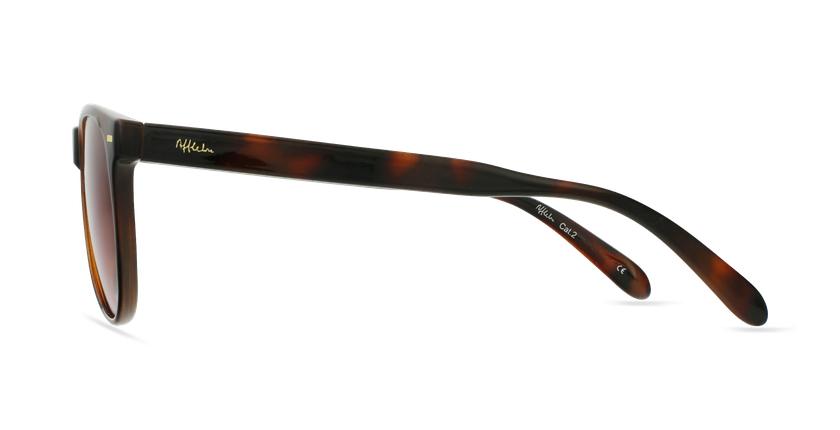 Óculos de sol MIRAMAR TO2 tartaruga/castanho - Vista lateral