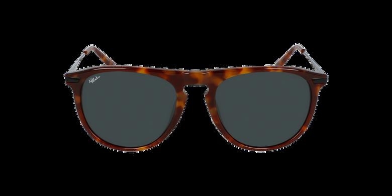 Óculos de sol homem Lyam to tartaruga