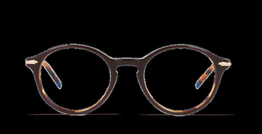 Lunettes de vue homme HARLOW marron/écaille - Vue de face