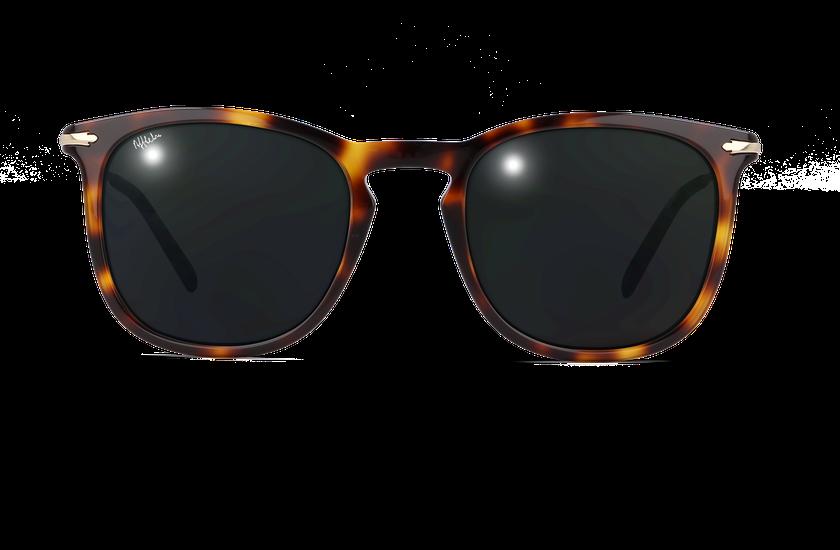 Lunettes de soleil homme BATH écaille - danio.store.product.image_view_face