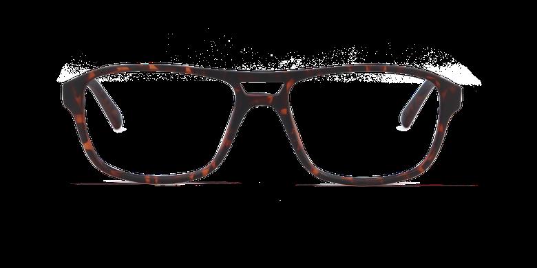 Óculos graduados homem ELIO TO (TCHIN-TCHIN +1€) tartaruga