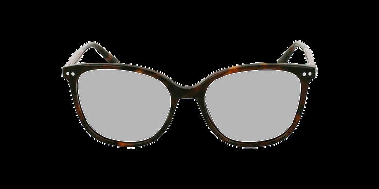 Óculos graduados senhora MOZART TO tartaruga