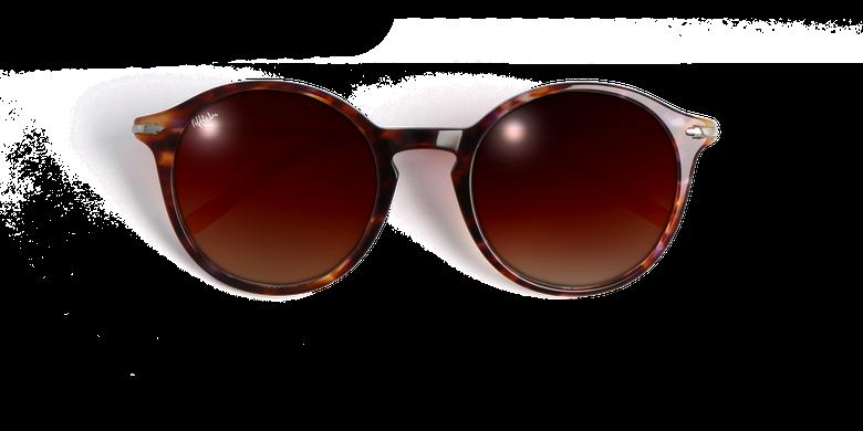 Gafas de sol mujer DERRY carey